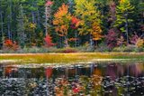 Somes Pond In Autumn, Somesville, Maine Art Print