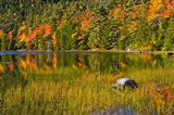 Autumn Reflections In Bubble Pond, Acadia National Park, Maine Art Print