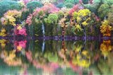 Great Long Pond Reflection,  Maine Art Print