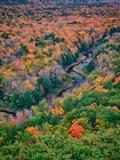 Big Carp River, Porcupine Mountains Wilderness State Park, Michigan Art Print