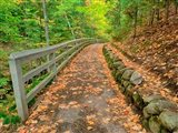 Autumn Trail Leading To Munising Falls Art Print