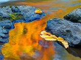 Michigan, Upper Peninsula Fall Colors Reflecting In River With Leaves Floating Art Print
