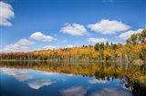 Panoramic View Of Pete's Lake, Michigan Art Print