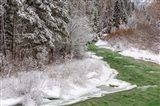 Coal Creek In The Winter, Montana Art Print