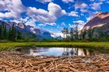 Driftwood And Pond, Saint Mary Lake, Glacier National Park, Montana Art Print