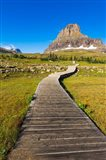 Hidden Lake Trail At Logan Pass, Glacier National Park, Montana Art Print