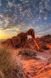 Elephant Rock, Valley Of Fire State Park, Nevada Art Print