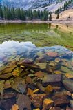 Stella Lake, Great Basin National Park, Nevada Art Print