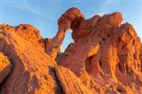 Fire State Park's Elephant Rock, Nevada Art Print
