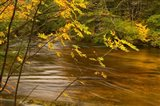 New Hampshire, White Mountain National Forest River Art Print