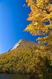 White Mountains, Franconia Notch, New Hampshire Art Print