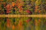 Reflected autumn colors at Echo Lake State Park, New Hampshire Art Print