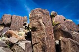 Petroglyphs At Three Rivers Petroglyph Site, Three Rivers, New Mexico Art Print