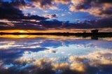 Wetlands At Sunrise, Bosque Del Apache National Wildlife Refuge, New Mexico Art Print