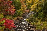 New York, Adirondack State Park Stream And Forest In Autumn Art Print