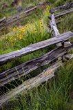 Split Rail Fence In Smith Rock State Park, Oregon Art Print