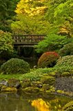 Moon Bridge, Portland Japanese Garden, Oregon Art Print