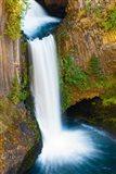 Toketee Falls, Umpqua National Forest, Oregon Art Print