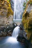 Susan Creek Falls, Umpqua National Forest, Oregon Art Print