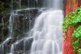Coopey Falls, Oregon Art Print