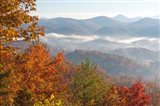 Morning Light Fog Viewed From Foothills Parkway Art Print