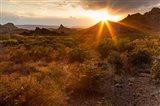 Sunset In Big Bend National Park Art Print