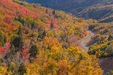 Landscape With Nebo Loop Road, Uinta National Forest, Utah Art Print