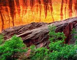 Escalante Neon Canyon, Utah Art Print