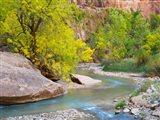 Utah Zion National Park, Virgin River Art Print