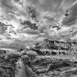 Sulphur Creek, Capitol Reef National Park, Utah (BW) Art Print