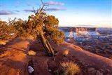 Overlook Vista At Canyonlands National Park, Utah Art Print