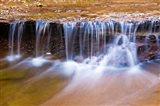 Cascade Along The Left Fork Of North Creek, Zion National Park, Utah Art Print