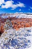 Fresh Powder On Rock Formations In The Silent City, Utah Art Print