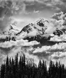 Mount Carrie And Carrie Glacier, Washington (BW) Art Print