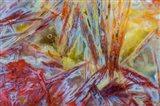 Warm, Firey Agate Art Print