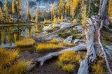 Horseshoe Lake Landscape In The Alpine Lakes Wilderness Art Print