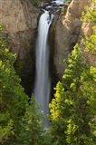 Tower Falls, Yellowstone National Park, Wyoming Art Print