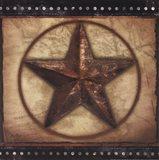 Barn Star III Art Print