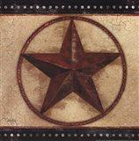 Barn Star IV Art Print