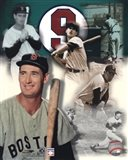 Ted Williams - Legends Of The Game Composite Art Print
