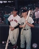 Ted Williams / Mickey Mantle Art Print