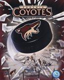 Phoenix Coyotes 2005 - Logo / Puck Art Print