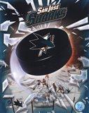 2008 San Jose Sharks Team Logo Art Print