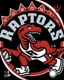 Toronto Raptors Team Logo Art Print