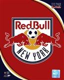 2011 New York Red Bulls Team Logo Art Print
