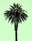 Palm Tree 1996 (Green) Art Print
