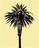 Palm Tree 1996 (Yellow) Art Print