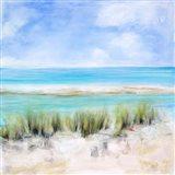 Captiva Island Art Print