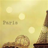 Memories of Paris Art Print