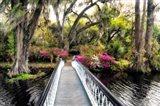 The Garden Bridge Art Print